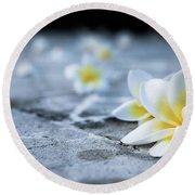 Plumaria Flowers Round Beach Towel