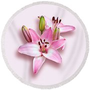Spray Of Pink Lilies Round Beach Towel