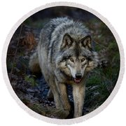 Timber Wolf Round Beach Towel