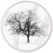 Winter Tree In Fog Round Beach Towel
