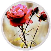 Round Beach Towel featuring the photograph 40 Something by Faith Williams