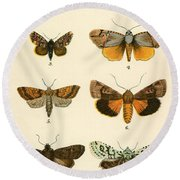 Butterflies Round Beach Towel by English School