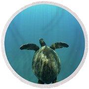 Green Sea Turtle Swimming Round Beach Towel