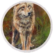 Grey Wolf Round Beach Towel by David Stribbling