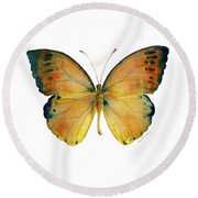 53 Leucippe Detanii Butterfly Round Beach Towel