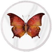 58 Andria Butterfly Round Beach Towel