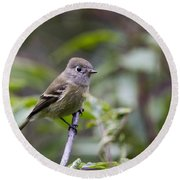 Alder Flycatcher Round Beach Towel