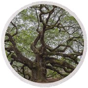 Sc Angel Oak Tree Round Beach Towel