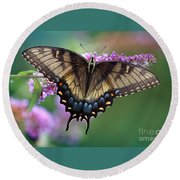 Eastern Tiger Swallowtail Butterfly On Butterfly Bush Round Beach Towel