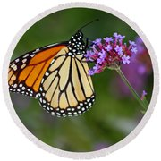 Monarch Butterfly In Garden Round Beach Towel