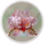 Pink Electrabrite Bearded Iris Round Beach Towel