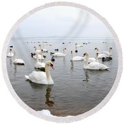 60 Swans A Swimming Round Beach Towel by Laurel Best