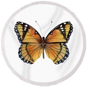 76 Viceroy Butterfly Round Beach Towel