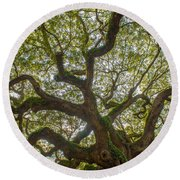 Island Angel Oak Tree Round Beach Towel