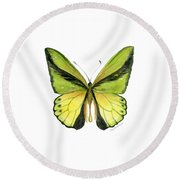 8 Goliath Birdwing Butterfly Round Beach Towel