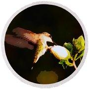 Hummingbird Round Beach Towel by John Freidenberg
