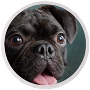 Portrait Of Pug Bulldog Mix Dog Round Beach Towel