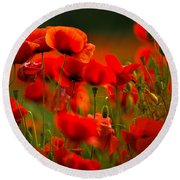 Poppy Dream Round Beach Towel