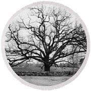 A Bare Oak Tree Round Beach Towel