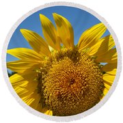 A Beautiful Day In The Sunflower Neighborhood Round Beach Towel by Eva Kaufman