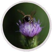 A Bee Sucks In A Flower In Arcos De La Round Beach Towel