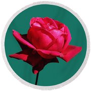 A Big Red Rose Round Beach Towel by Tom Janca