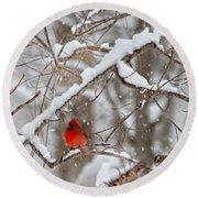 A Cardinal Snow Round Beach Towel