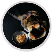 A Cat Beside A Dish Of Cat Food Round Beach Towel