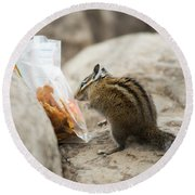 A Chipmunk Sniffs A Bag Of Dried Fruit Round Beach Towel