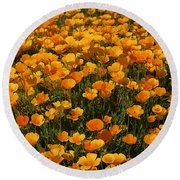 A Field Of Poppies Round Beach Towel