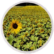 A Field Of Sunflowers Round Beach Towel by Eva Kaufman