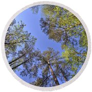 A Forest Sky Round Beach Towel