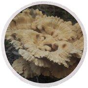 A Fungus Among Us 2 Round Beach Towel