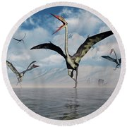 A Gathering Of Large Quetzalcoatlus Round Beach Towel