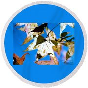 Round Beach Towel featuring the photograph Autumn  In New Orleans Louisiana by Michael Hoard