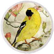 A Goldfinch Spring Round Beach Towel by Angela Davies