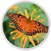A Gulf Fritillary Butterfly On A Yellow Daisy Round Beach Towel by Eva Kaufman