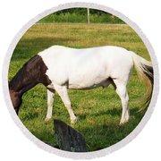 A Horse Named Dipstick Round Beach Towel