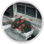 Round Beach Towel featuring the photograph A Little Color In A Drab World by Rodney Lee Williams