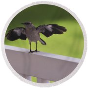 A Little Visitor Northern Mockingbird Round Beach Towel by Terry DeLuco