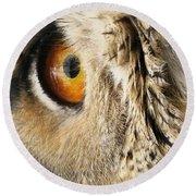 Round Beach Towel featuring the photograph Bubo Bubo- Eurasian Eagle Owl. Close Up. by Ausra Huntington nee Paulauskaite