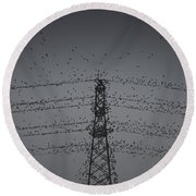 A Murmuration Of Starlings Round Beach Towel