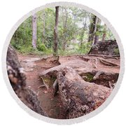 A New View From The Woods Round Beach Towel