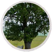 A One Horse Tree And Its Horse Round Beach Towel