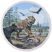 A Pack Of Canis Dirus Wolves Approach Round Beach Towel