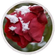 A Passing Unrequited - Rose In Winter Round Beach Towel