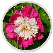 A Peony Bowl Round Beach Towel by Eva Kaufman