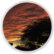 A Phoenix Sunset Round Beach Towel by Tom Janca