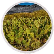 Round Beach Towel featuring the photograph A Prickly Pear View by Mark Myhaver