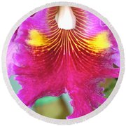 Round Beach Towel featuring the photograph A Purple Cattelaya  Orchid by Lehua Pekelo-Stearns